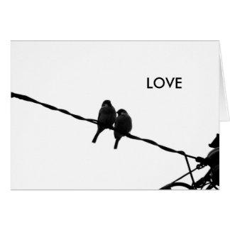 Cartão Amor/cartão com fotos pares B&W do pardal