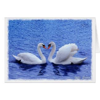 Cartão amor da cisne