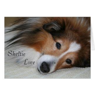 Cartão Amor de Sheltie