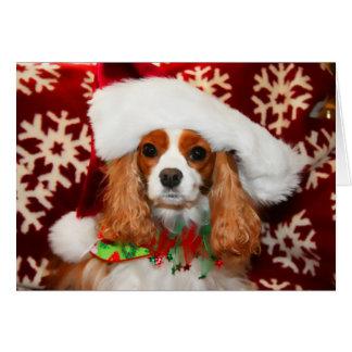 Cartão Amor descuidado do Natal do Spaniel de rei Charles