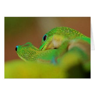 Cartão Amor do geco