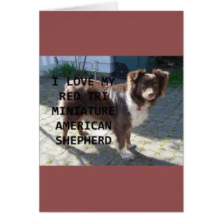 Cartão amor vermelho do mini pastor do am tri com PIC
