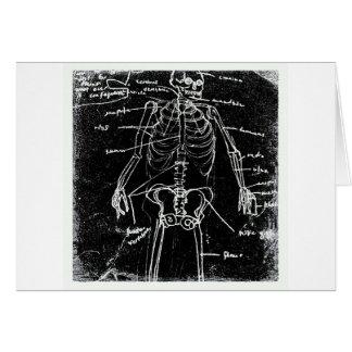 Cartão anatomia de esqueleto humana de tokyo do yaie