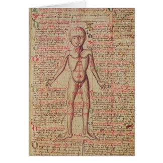 Cartão Anatomia do corpo humano
