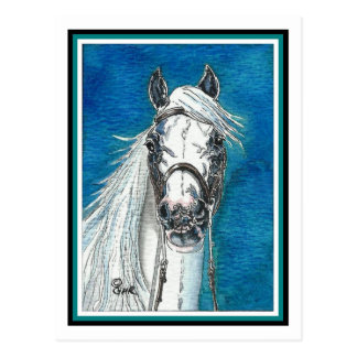 Cartão andaluz da arte do cavalo