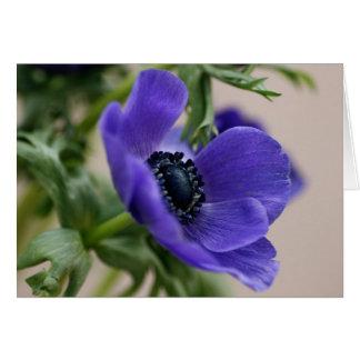 Cartão Anêmona azul