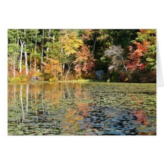Cartão Angra da almofada de lírio - lagoa de Whitney