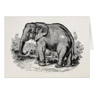 Cartão Animais personalizados elefante dos elefantes do