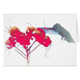 Cartão Animais selvagens animais do pássaro do colibri