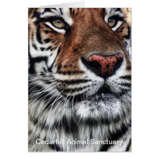 Cartão animal do santuário de Cedarhill