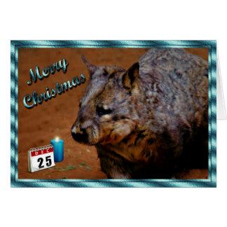 Cartão Animal do Xmas do AUSTRALIANO WOMBAT do NATAL