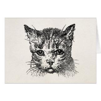 Cartão Animal dos gatinhos do gatinho dos gatos da cabeça