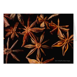 Cartão Anis de estrela