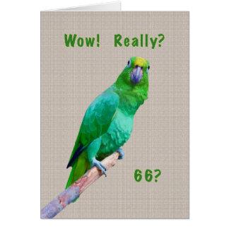 Cartão Aniversário, 66th, papagaio verde do Macaw em um