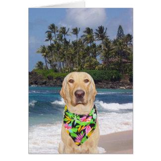 Cartão Aniversário amarelo havaiano customizável do