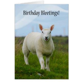 Cartão Aniversário bonito Bleetings do cordeiro -