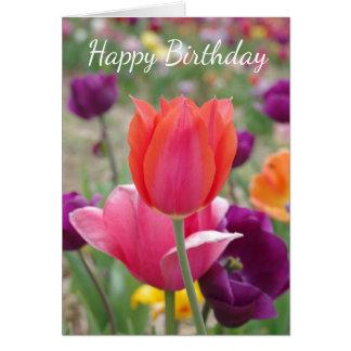 Cartão Aniversário bonito das tulipas do primavera