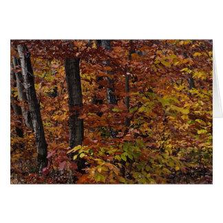 Cartão Aniversário da floresta da árvore de faia