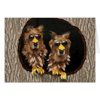 Cartão Aniversário das corujas do golden retriever