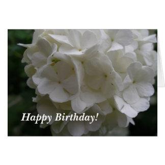 Cartão Aniversário de Bush do Snowball