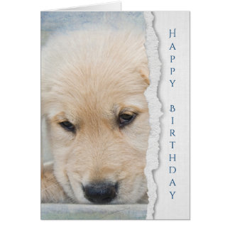 Cartão aniversário do filhote de cachorro do golden