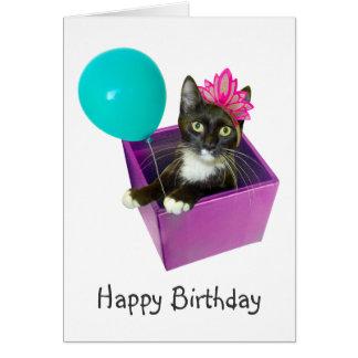 Cartão Aniversário do gato do smoking
