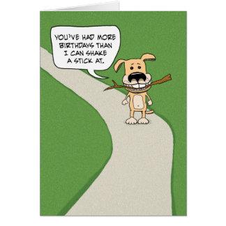 Cartão Aniversário engraçado: Agitação do cão uma vara