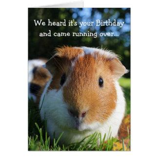 Cartão Aniversário engraçado bonito da cobaia