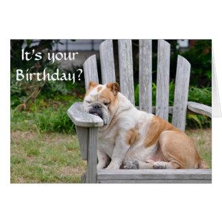 Cartão Aniversário engraçado do buldogue