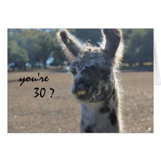 Cartão Aniversário engraçado do lama, 30o, sobre o monte