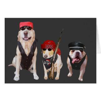 Cartão Aniversário engraçado dos cães/laboratório do