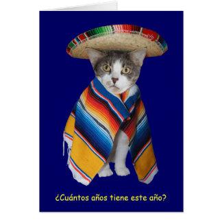 Cartão Aniversário espanhol engraçado do gato/gatinho
