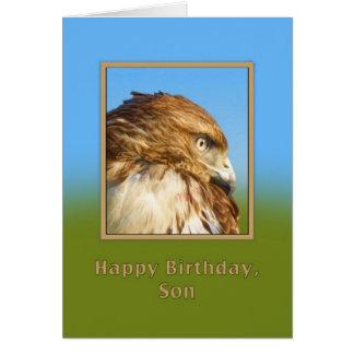 Cartão Aniversário, filho, falcão Áspero-equipado com