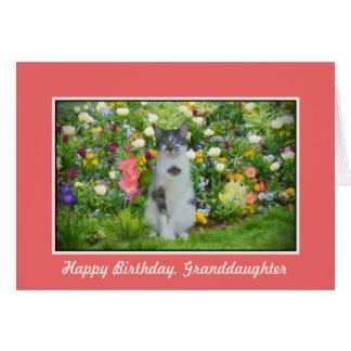 Cartão Aniversário, neta, gato entre as flores