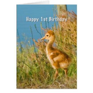 Cartão Aniversário, ø, guindaste de Sandhill do bebê