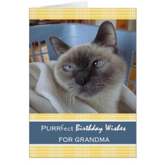 Cartão Aniversário para a avó, gato na cesta de