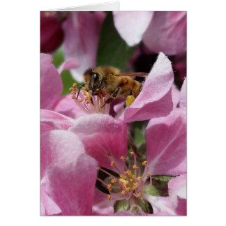 Cartão Aniversário tardivo ou Occation da abelha de Buzy
