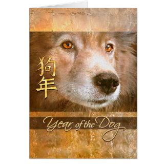 Cartão Ano novo chinês dos olhos do ouro do cão