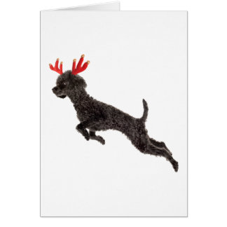 Cartão Antlers pretos da rena do cão de caniche do