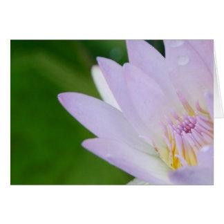 Cartão Apenas para você/Lotus na fotografia