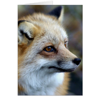 Cartão Apenas um Fox pequeno bonito