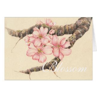 Cartão Apple floresce ramo
