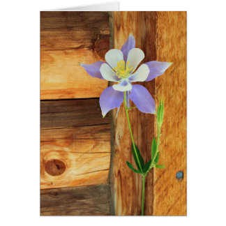 Cartão Aquilégia azul e madeira toda a ocasião