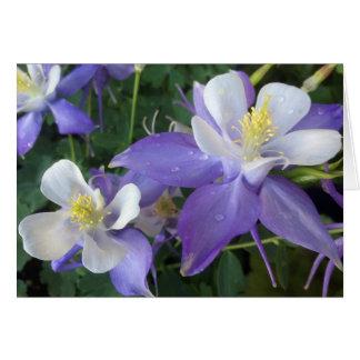 Cartão aquilégia da flor