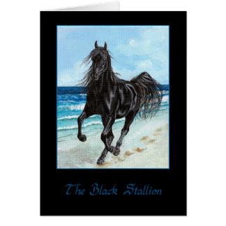 Cartão árabe do cavalo do garanhão preto