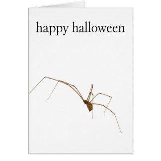 Cartão Aranha