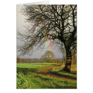 Cartão Arco-íris e árvores