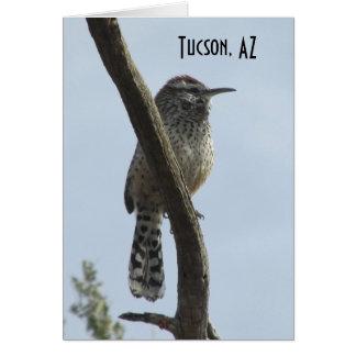 Cartão Arizona de Tucson da carriça de cacto