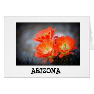 Cartão Arizona em chamas do deserto