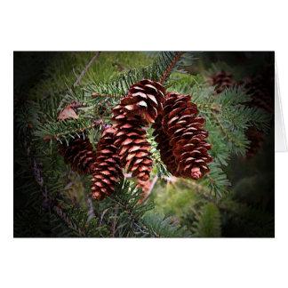 Cartão Arranjo de Pinecone do Natal